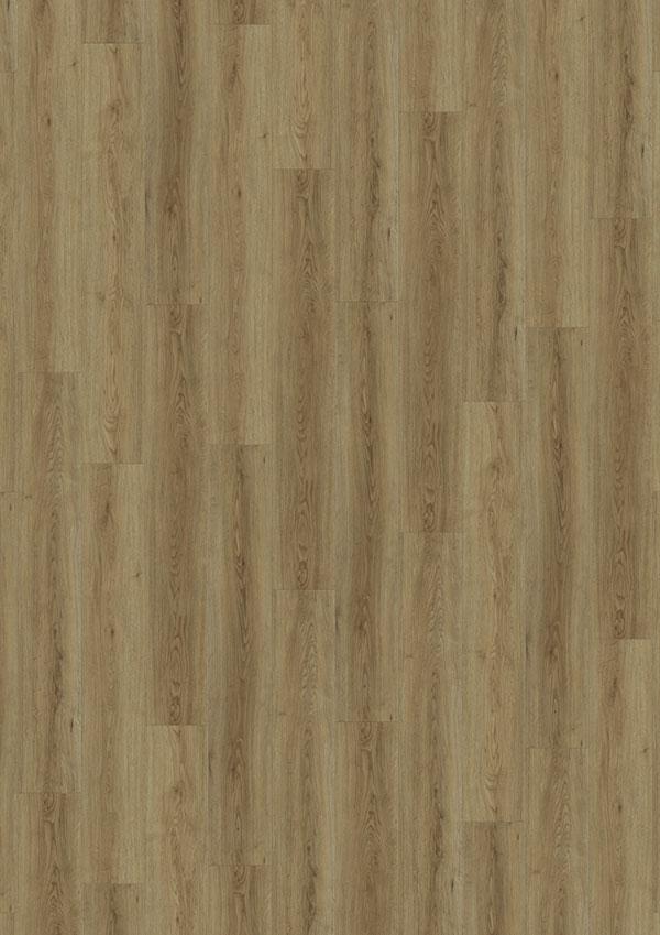 t_69Am62_Bleaches-Oak-4V