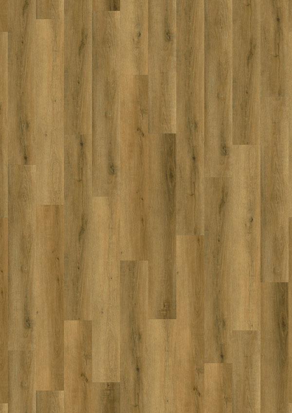t_69Am88_Royal-Oak-4V