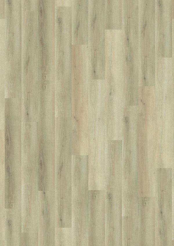 t_69Am90_Panama-Oak