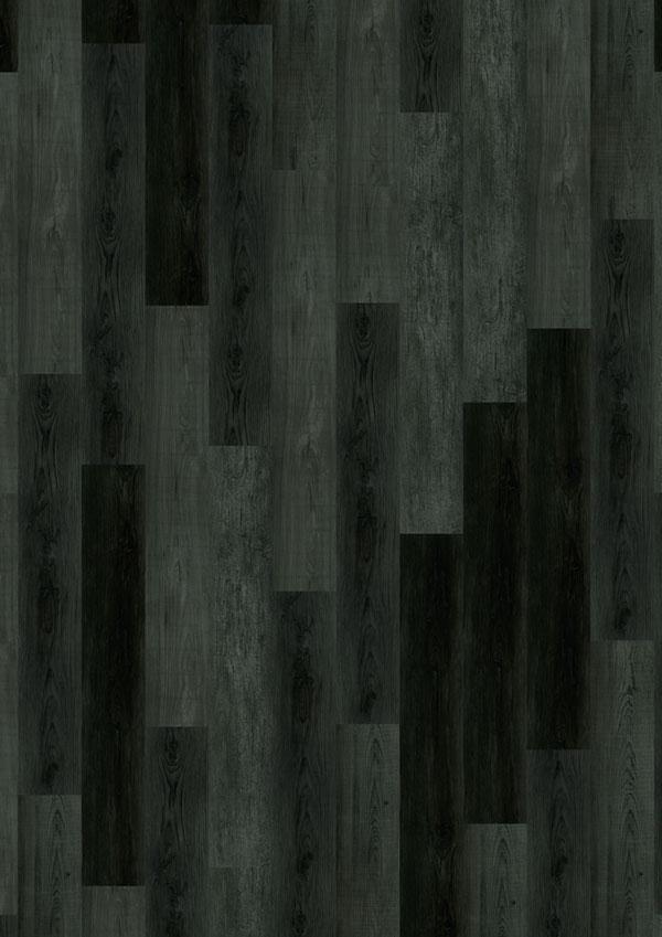 t_69Am91_Pagoda-Oak